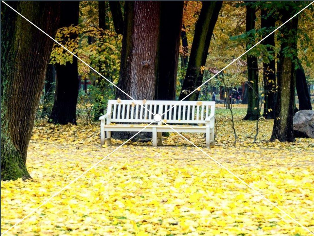 Ławka w parku - przykład na poprawny kadr centralny