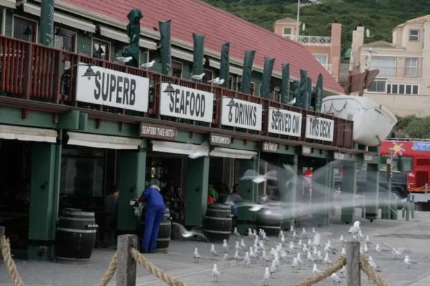 Molo di Hout Bay - Cape Town
