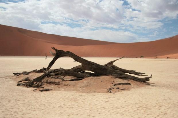 Il costo di un self drive in Namibia: Dead Vlei