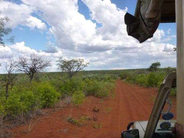 Quanto costa un self drive in Namibia? Safari al Waterberg Plateau