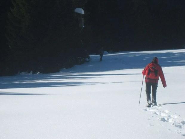 Vacanze in Carnia: passeggiate con le ciaspe