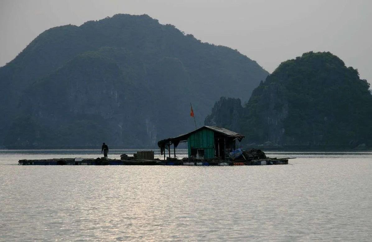Come visitare Halong Bay: i miei consigli e le mie disavventure!
