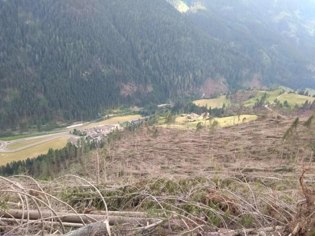 Moena, alberi caduti lungo la strada per Malga Peniola