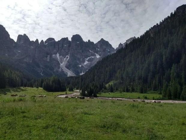 All'inizio del giro delle malghe della Val Venegia