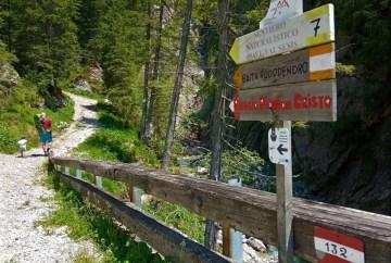 Il sentiero naturalistico del Piave