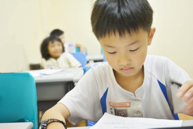 singapore school in jb