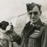 Bonzo Joined the RAF ...