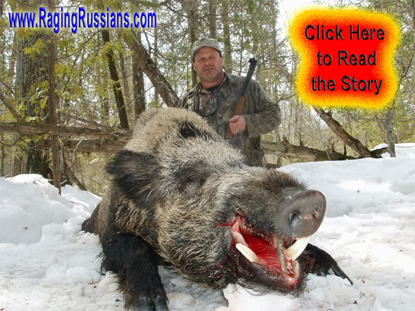 Genuine Boar Hunt and the 30-30 Winchester, a North American Classic