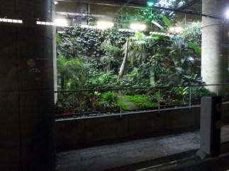 Ligne 14, Gare de Lyon, jardin exotique
