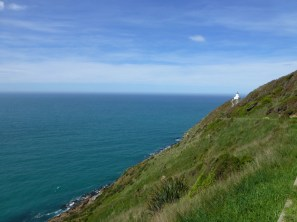 NZ_NUGGET-POINT_33