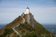 Vers le phare de Nugget Point