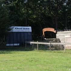 Océ'ane, location d'âne dans la Presqu'île de Crozon