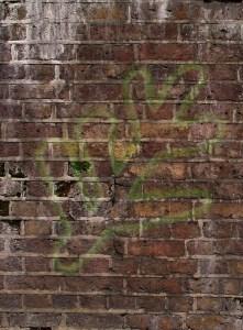 The symbol on the wall in Willow Rainbridge's basement.