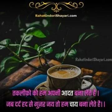 chai lover status, tea lover status