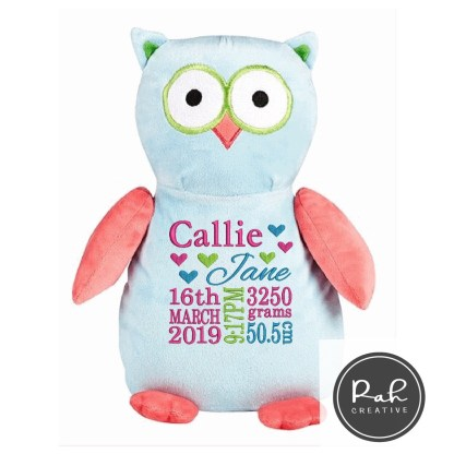 Blue and pink owl cubbie