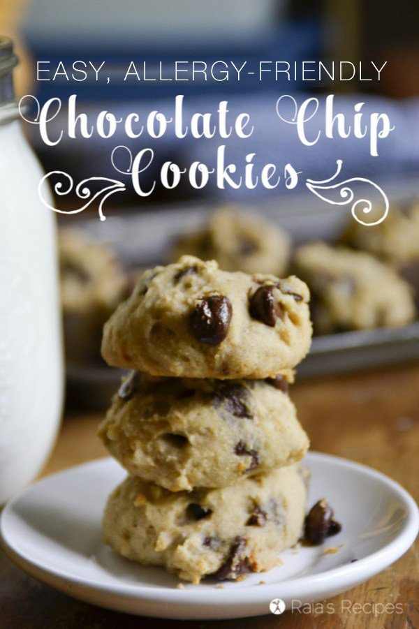 Nothing quite beats a good, easy chocolate chip cookie recipe. These allergy-friendly ones sure hit the spot!