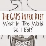 The GAPS Intro Diet – What In the World Do I Eat? {A Recipe Round-Up}
