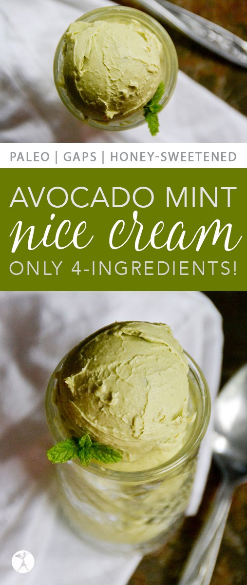 Full of healthy fat, vitamins and minerals, this paleo and GAPS-friendly 4-Ingredient Avocado Mint Nice Cream is a treat you don't have to feel guilty eating! #paleo #gapsdiet #glutenfree #dairyfree #realfood #eggfree #avocado #mint #icecream #nicecream
