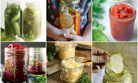 Over 40 Easy Fermented Veggie Recipes