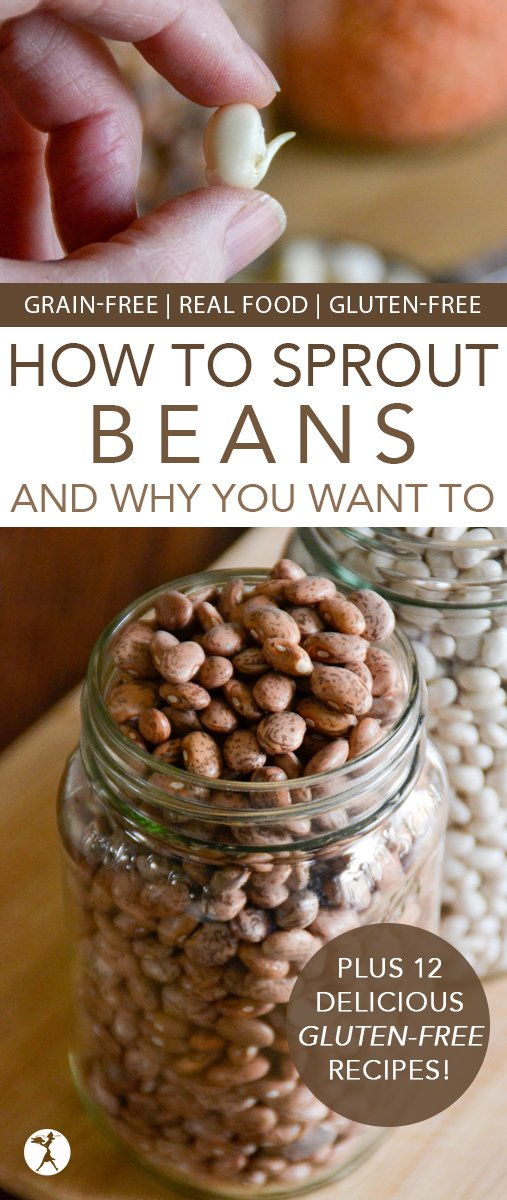 Find out how to take legumes from one of the most undigestible foods we could eat to a living, enzyme-rich, nutritional powerhouse! Plus 12 Delicious Gluten-Free Recipes. #glutenfree #grainfree #realfood #wapf #traditionalfood #healthy #beans #legumes #lentils