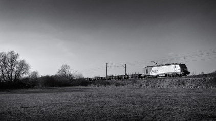 Harsh contrasts of the end of the day are quite interesting for black-and-white pictures. The bright clean side of this Fret SNCF Prima EL2U is in opposition with the dark silhouettes of the trees.