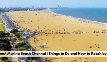 All about Marina Beach Chennai   Things to do and How to Reach By Train