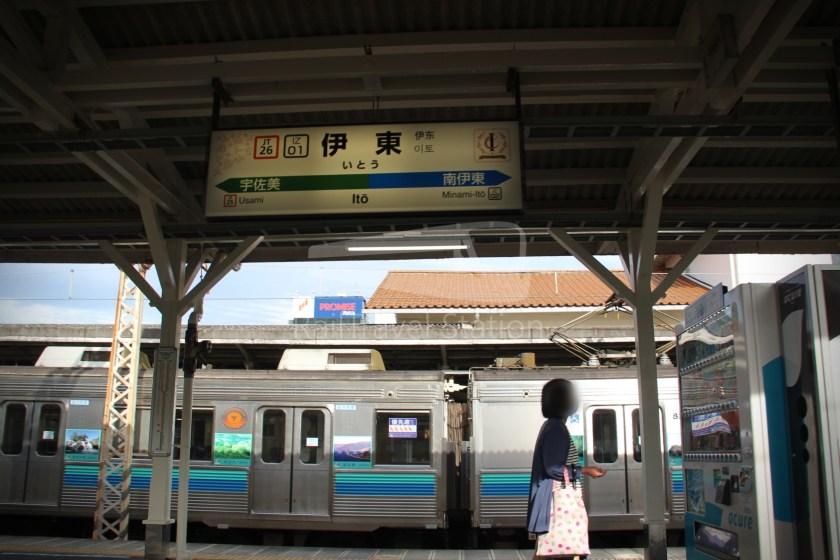 Odoriko 114 Izukyu-Shimoda Tokyo 079