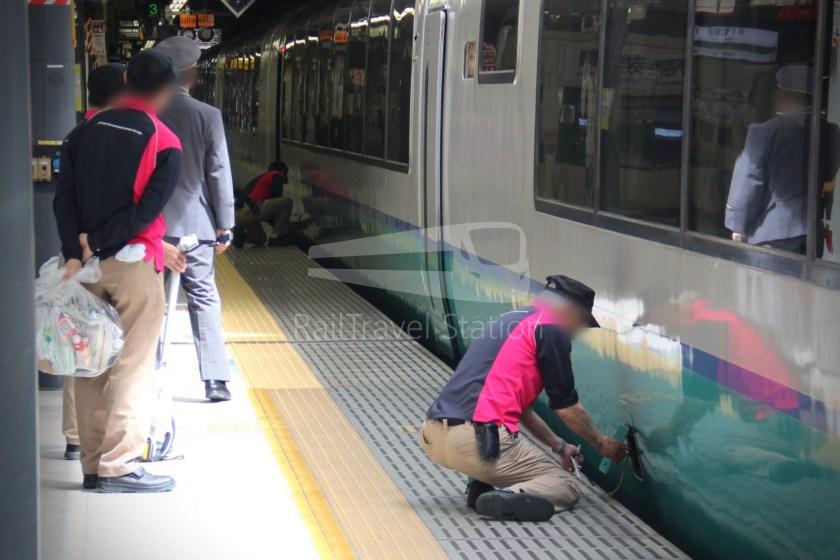 Super View Odoriko 3 Shinjuku Izukyu-Shimoda 020