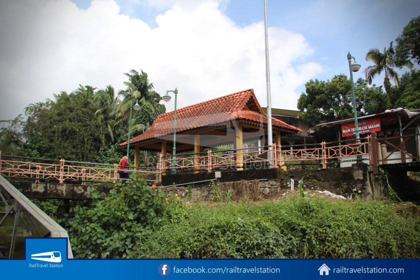 Kuching Penambang The White Barouk Kampung Boyan 018