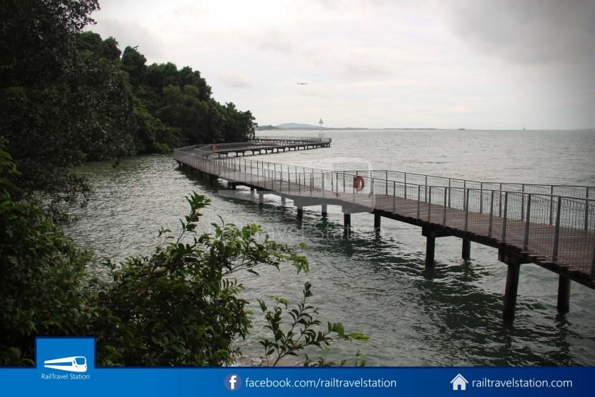 Chek Jawa Wetlands 008