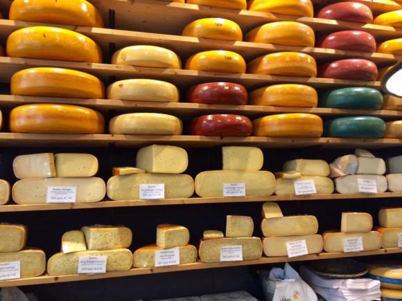 rotterdam cheeses