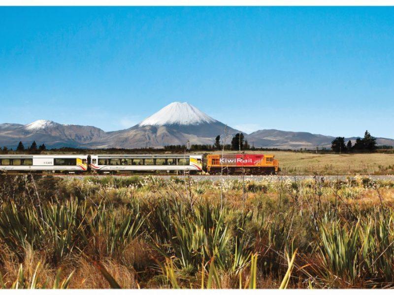 auckland to wellington train New Zealand