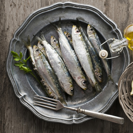 sardines in marseilles