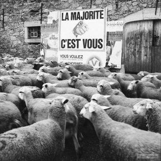 photo-funny-rene_maltet-06