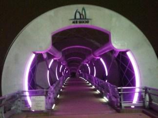 A luminescent silkworm bridge near Montmartre Park.