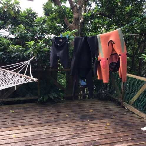 Have you ever seen wetsuits flipped inside-out and hung on a laundry line?
