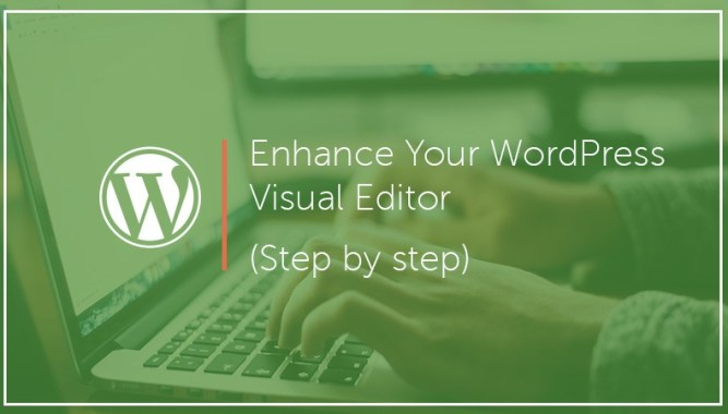 Enhance Your WordPress Visual Editor