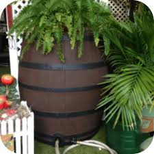 50 Gallon Flat Back Whiskey Rain Barrel also in Gray