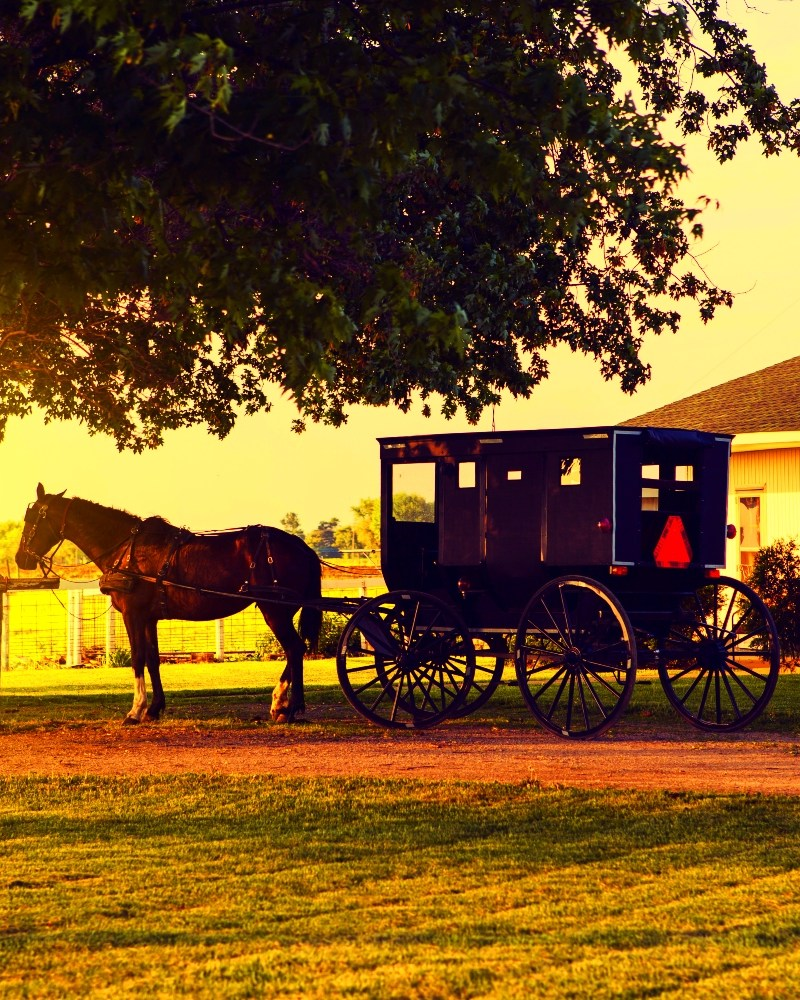 10 Ways to Live Frugally Like the Amish
