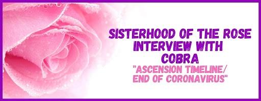 """Кобра: Медитация """"Линия Вознесения / конец коронавируса"""". Интервью с Сестричеством Розы 2 апреля 2020 года."""