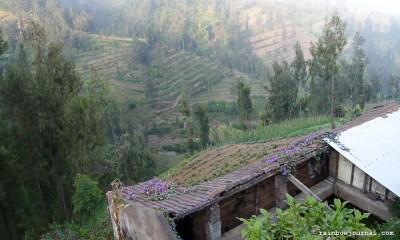 Village near Yoschi's Hotel near Mt. Bromo in Indonesia