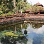 Another natural spring inside Tirta Empul.