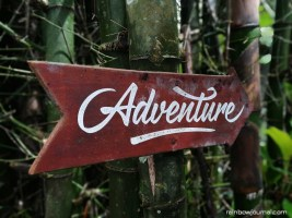 Mount Purro Nature Reserve - Mt Malvar hike