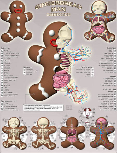 gingerbread man rip