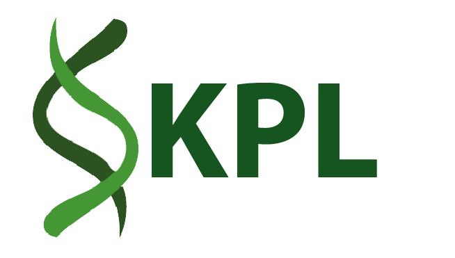 KPL Marketing Promotion Design