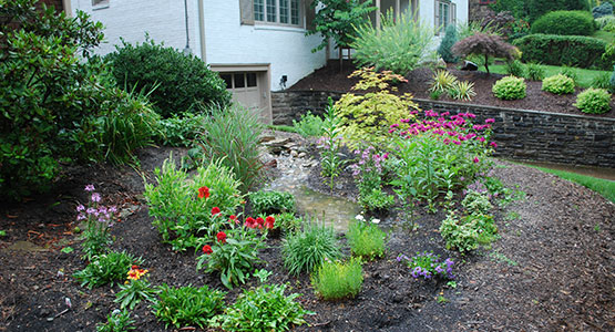 during a storm or shower the rain garden soaks up a few inches of water runoff from a roof driveway or other paved surface that water slowly seeps into