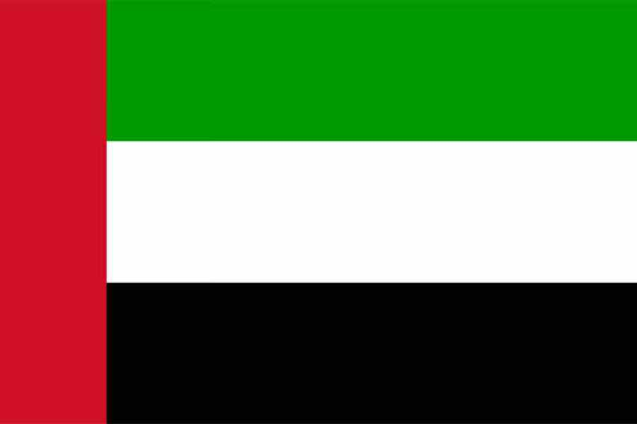 阿拉伯聯合大公國簽證辦理 | 阿提哈德航空96小時Free Stopover Visas申請步驟大公開