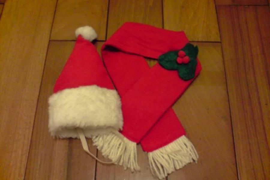 貓物║Daiso 大創39元 寵物帽子圍巾組 x 老公公未雨綢繆之聖誕快樂!!