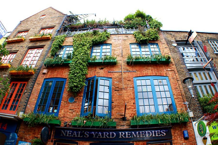 倫敦 London | 尼爾氏香芬庭園創始店 Neal's Yard – 柯芬園裡的五彩巷弄<3