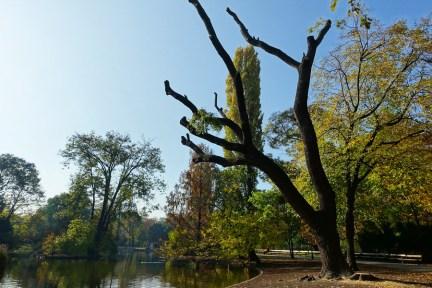 【維也納 Vienna】城市公園 Wiener Stadtpark